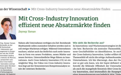 Effizient und risikoarm wachsen – Cross-Industry Innovation